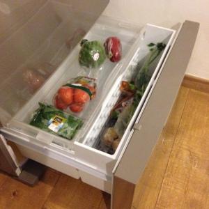 ruangan setting-an suhunya ideal utk menyimpan sayur